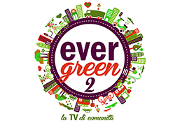Evergreen Tv di Comunità